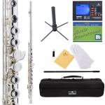 Cecilio 2Series Silver Plated Closed Hole C Flute + Tuner, Case, Stand, Pocketbook & Accessories