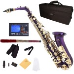 Cecilio 2Series Purple Lacquer Eb Alto Saxophone with Gold Keys + Tuner, Case, Mouthpiece, 11 Reeds, & More