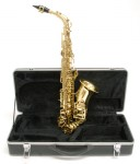 Windsor Gold Lacquer Alto Sax - Saxophone with case free shipping