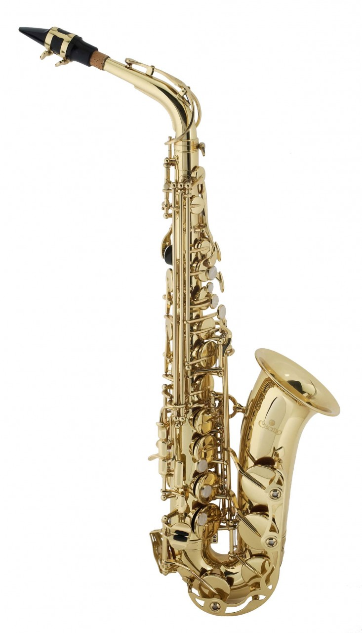 Buy Alto Sax with Gold Lacquer Body & Keys 2Series AS-280