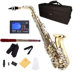 Cecilio 2Series Gold Lacquer Eb Alto Saxophone with Nickel Plated Keys + Tuner, Case, Mouthpiece, 11 Reeds, & More