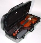 BAM 2201XL Series HighTech Viola Case