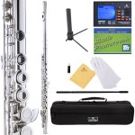Cecilio 2Series Nickel Plated Closed Hole C Flute + Tuner, Case, Stand, Pocketbook & Accessories