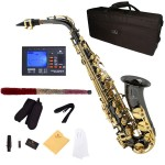Cecilio 2Series Black Nickel Plated Eb Alto Saxophone with Gold Keys + Tuner, Case, Mouthpiece, 11 Reeds, & More