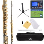 Cecilio 2Series Black Nickel Plated Closed Hole C Flute with Gold Plated Keys + Tuner, Case, Stand, Pocketbook & Accessories