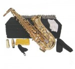 Gold Lacquer Eb Alto Sax with Case and Accessories Saxophone free shipping