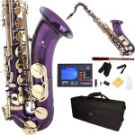 Cecilio 2Series Purple Lacquer Bb Tenor Saxophone with Gold Keys + Tuner, Case, Mouthpiece, 11 Reeds, & More
