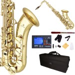Cecilio 2Series Gold Lacquer Body & Keys Bb Tenor Saxophone + Tuner, Case, Mouthpiece, 11 Reeds, & More