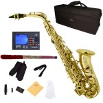 Cecilio 2Series Gold Lacquer Body & Keys Eb Alto Saxophone + Tuner, Case, Mouthpiece, 11 Reeds, & More