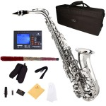 Cecilio 2Series Nickel Plated Body & Keys Eb Alto Saxophone + Tuner, Case, Mouthpiece, 11 Reeds, & More