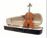Alegiro Violin Outfit with Case